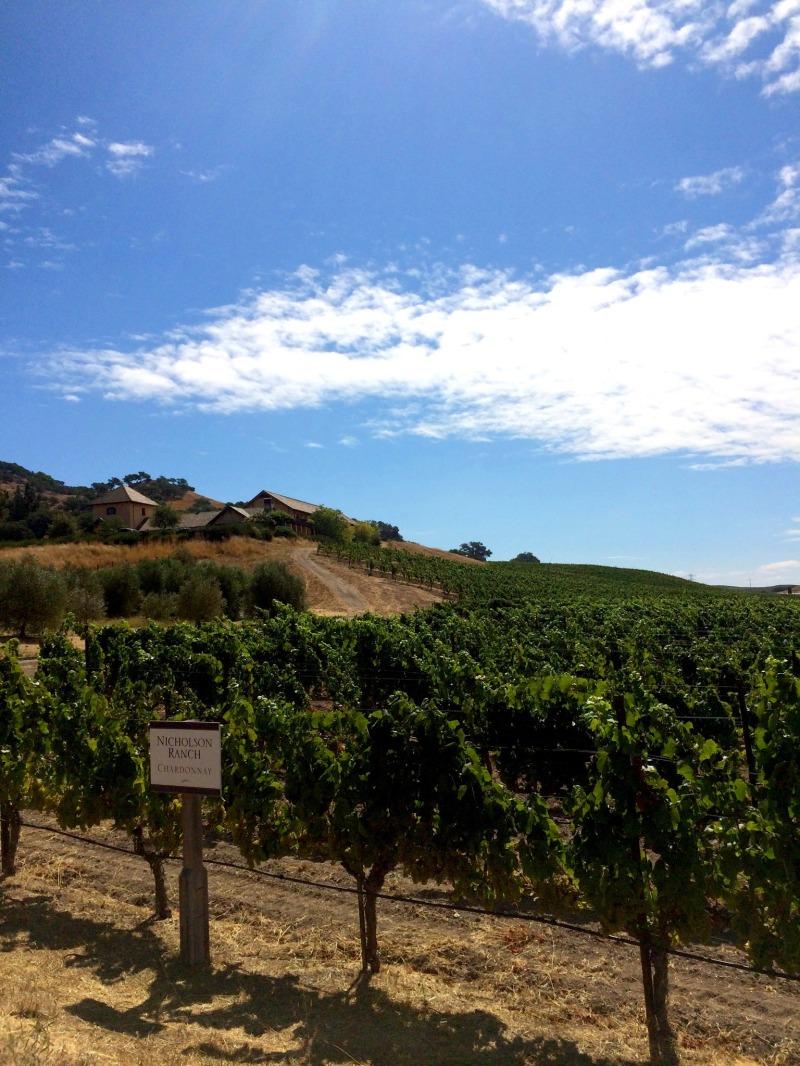 sonoma-napa-winery