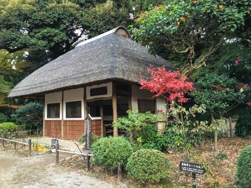 best-gardens-in-tokyo-17 (2)
