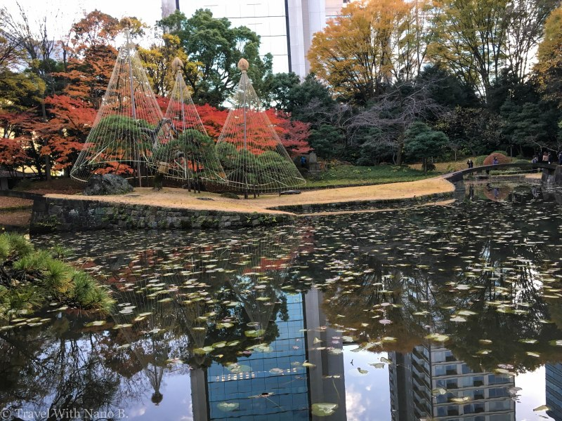 best-gardens-in-tokyo-5 (2)