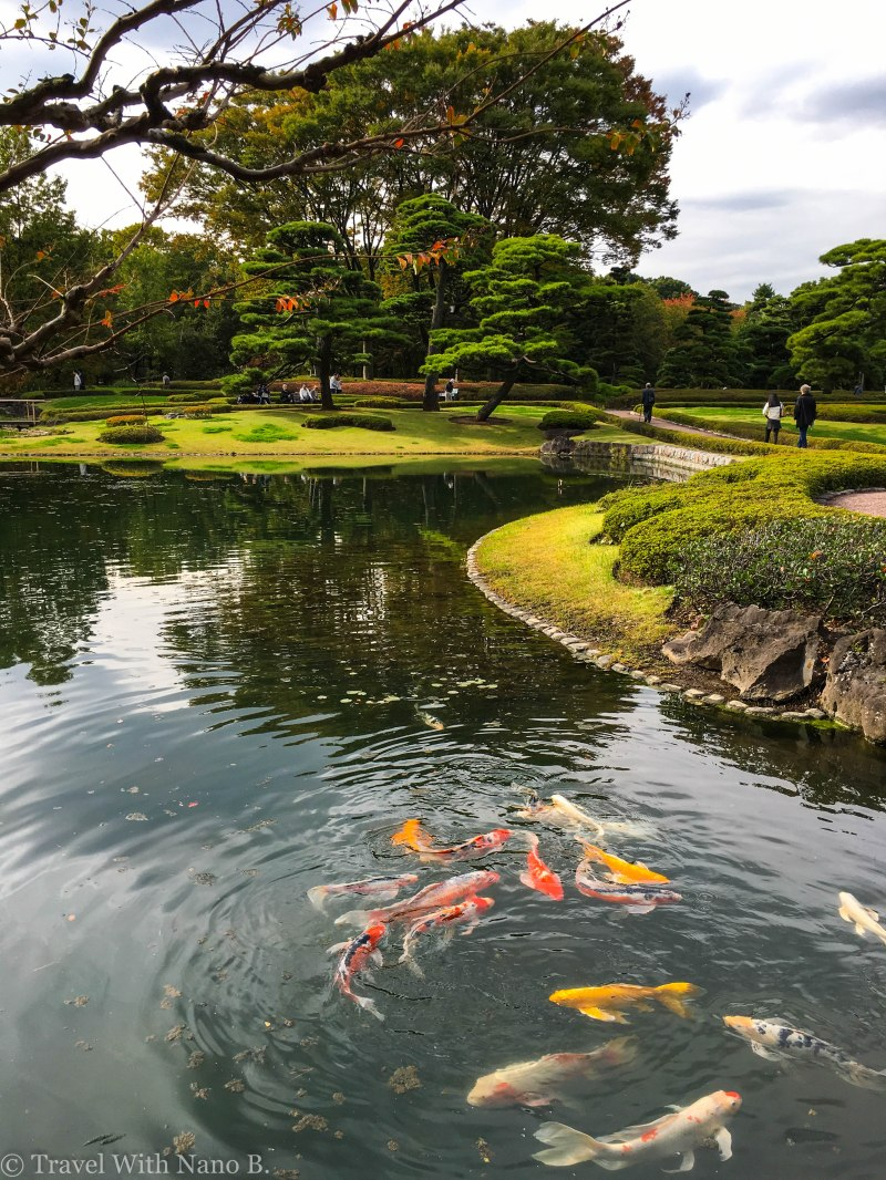 best-gardens-in-tokyo-8
