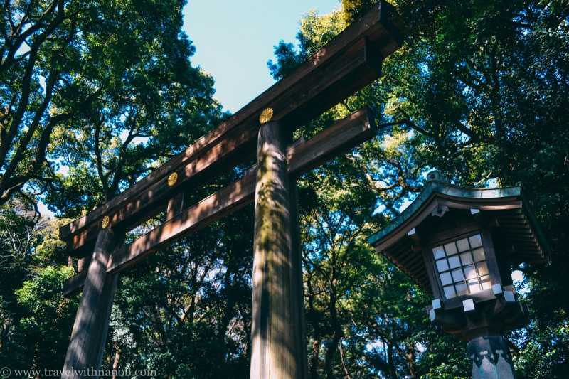 meiji-shrine-10