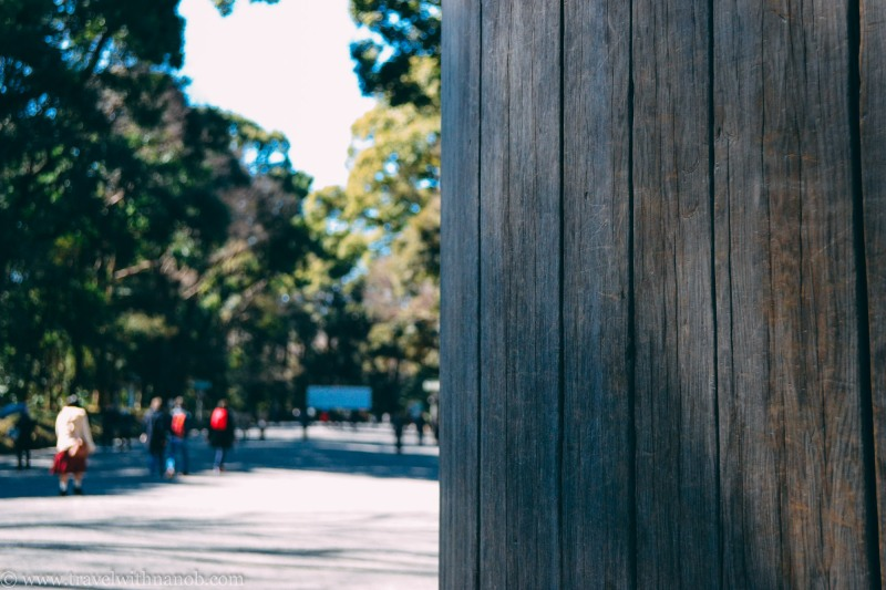 meiji-shrine-14