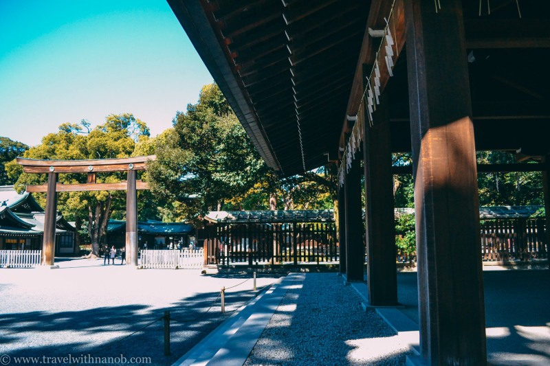 meiji-shrine-22
