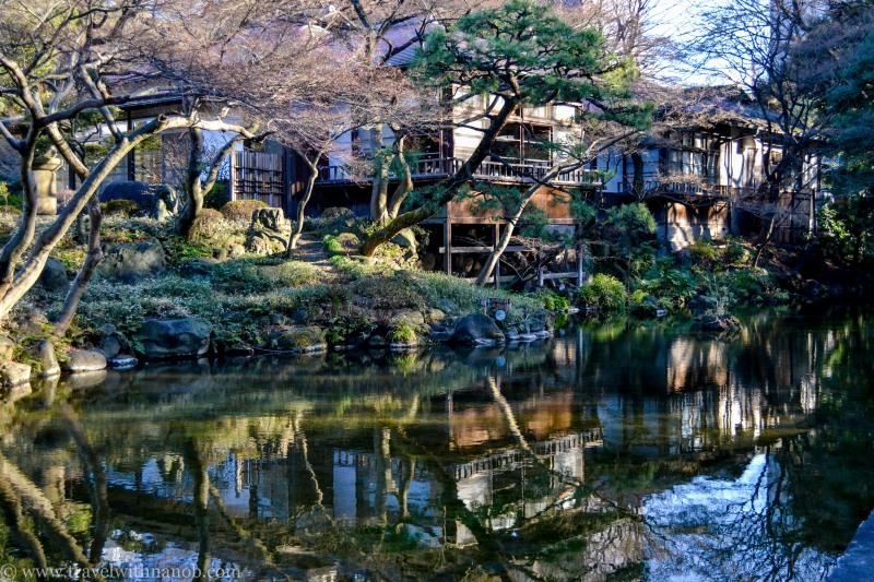 ume-and-sakura-blossom-15