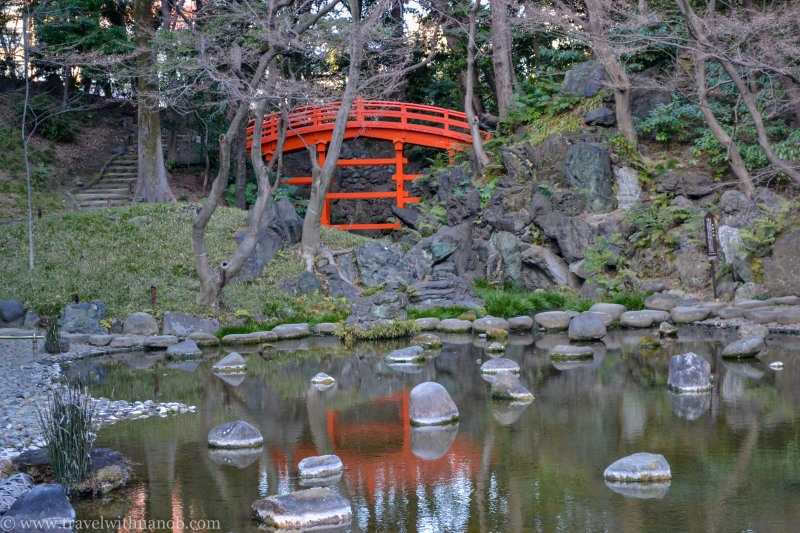 ume-and-sakura-blossom-16
