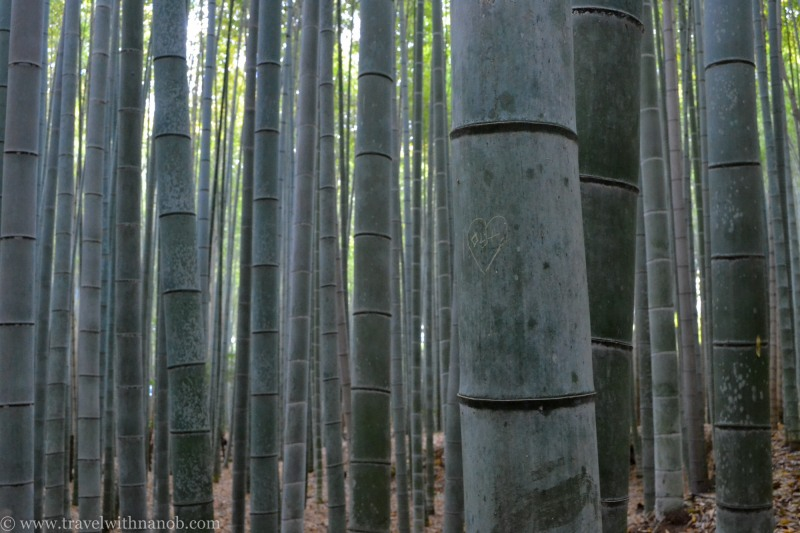 western-kyoto-guide-14