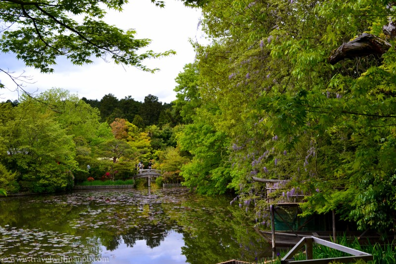 western-kyoto-guide-18