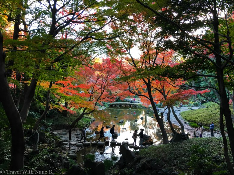 tokyo s best japanese gardens parks travelwithnanob