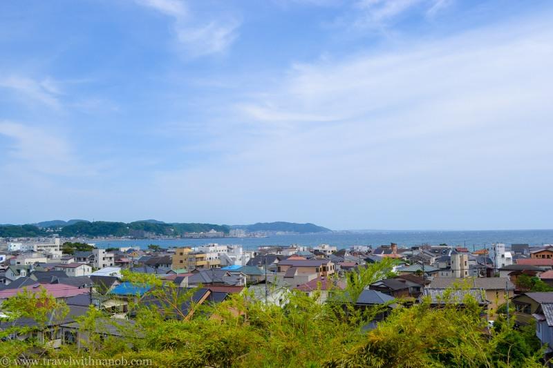 hydrangea-in-kamakura-japan-16