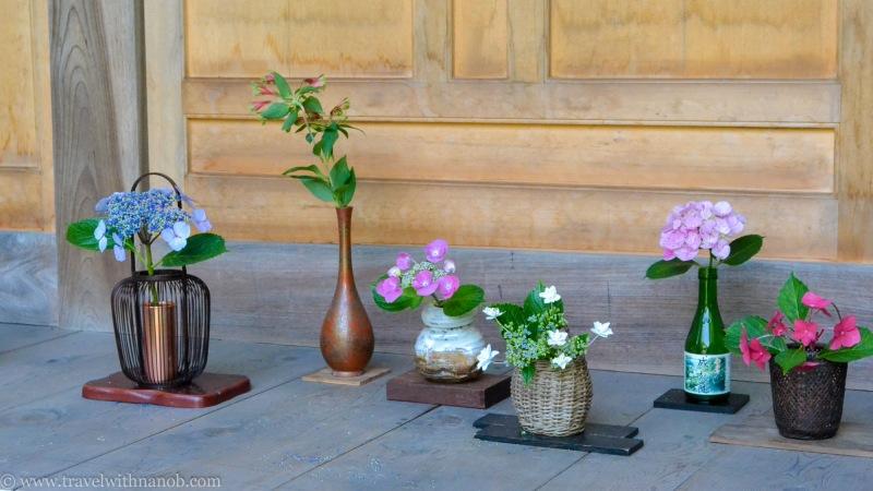 hydrangea-in-kamakura-japan-6