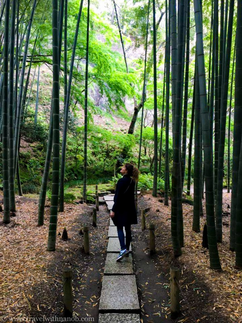 kamakura-guide-japan-1