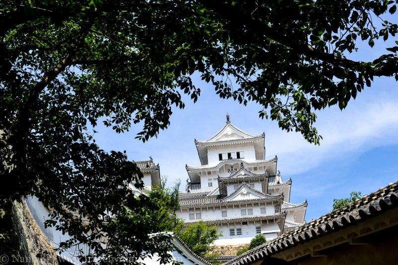 himeji-castle-and-kobe-day-trip-4