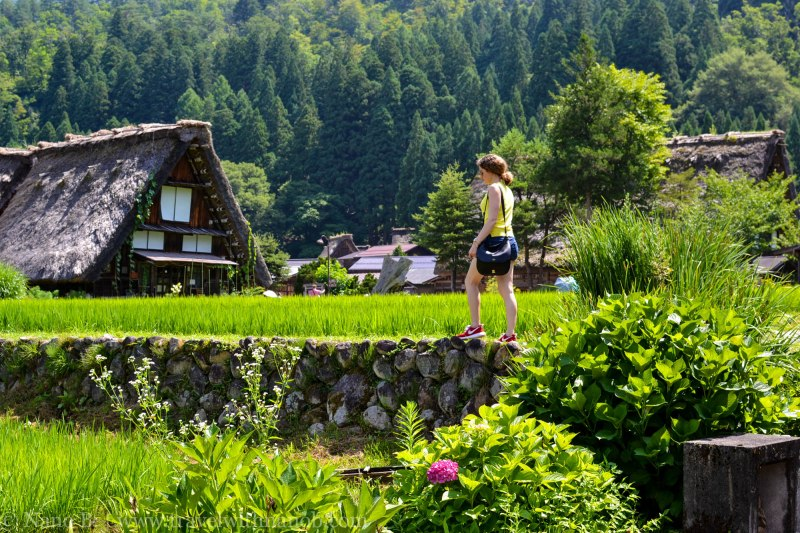 shirakawago-japan-20