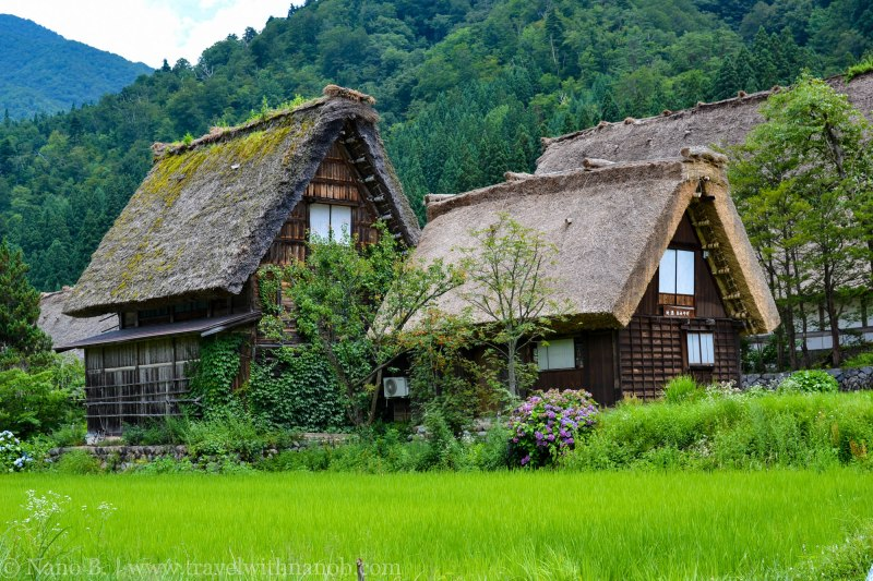shirakawago-japan-45