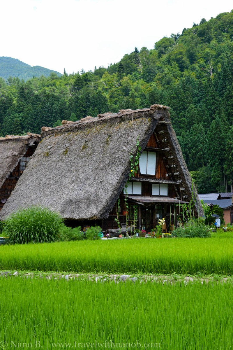 travel-to-japan-10