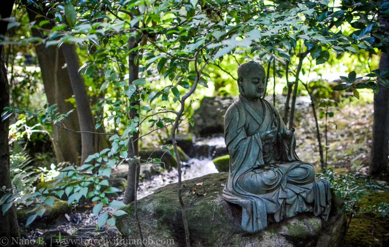travel-to-japan-15