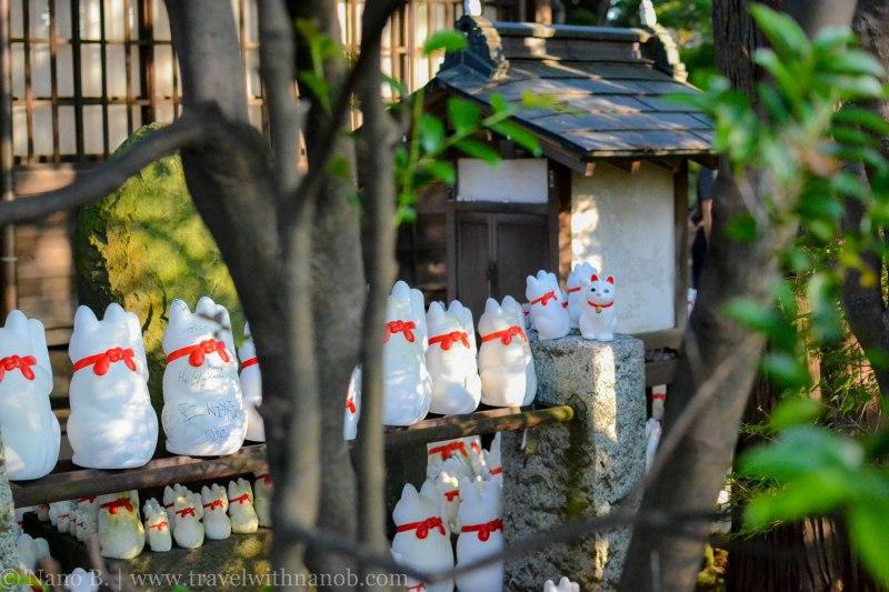 gotokuji-temple-tokyo-19