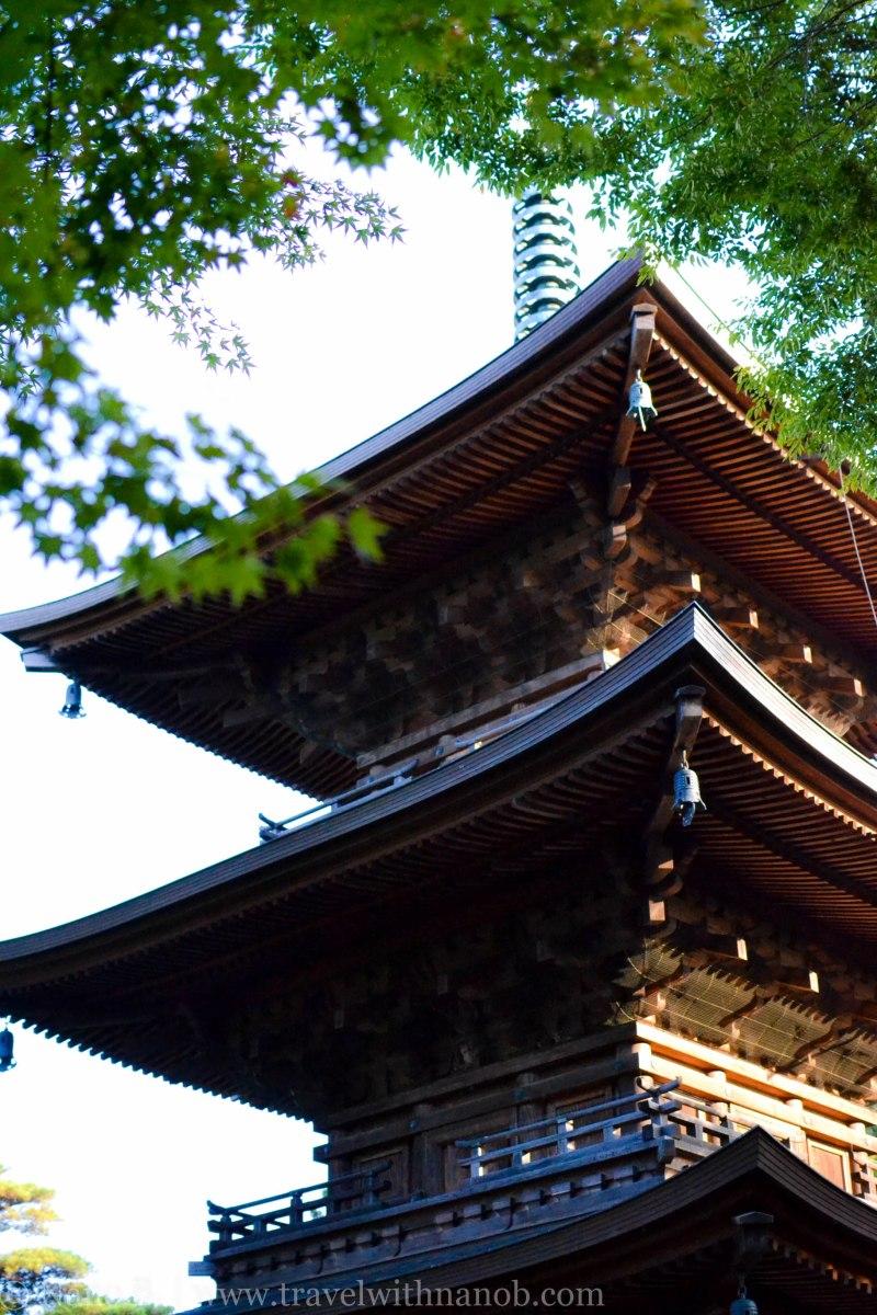 gotokuji-temple-tokyo-20