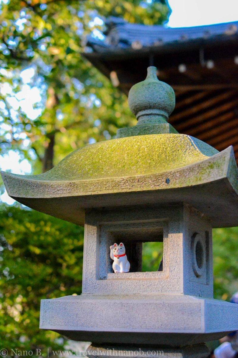 gotokuji-temple-tokyo-21