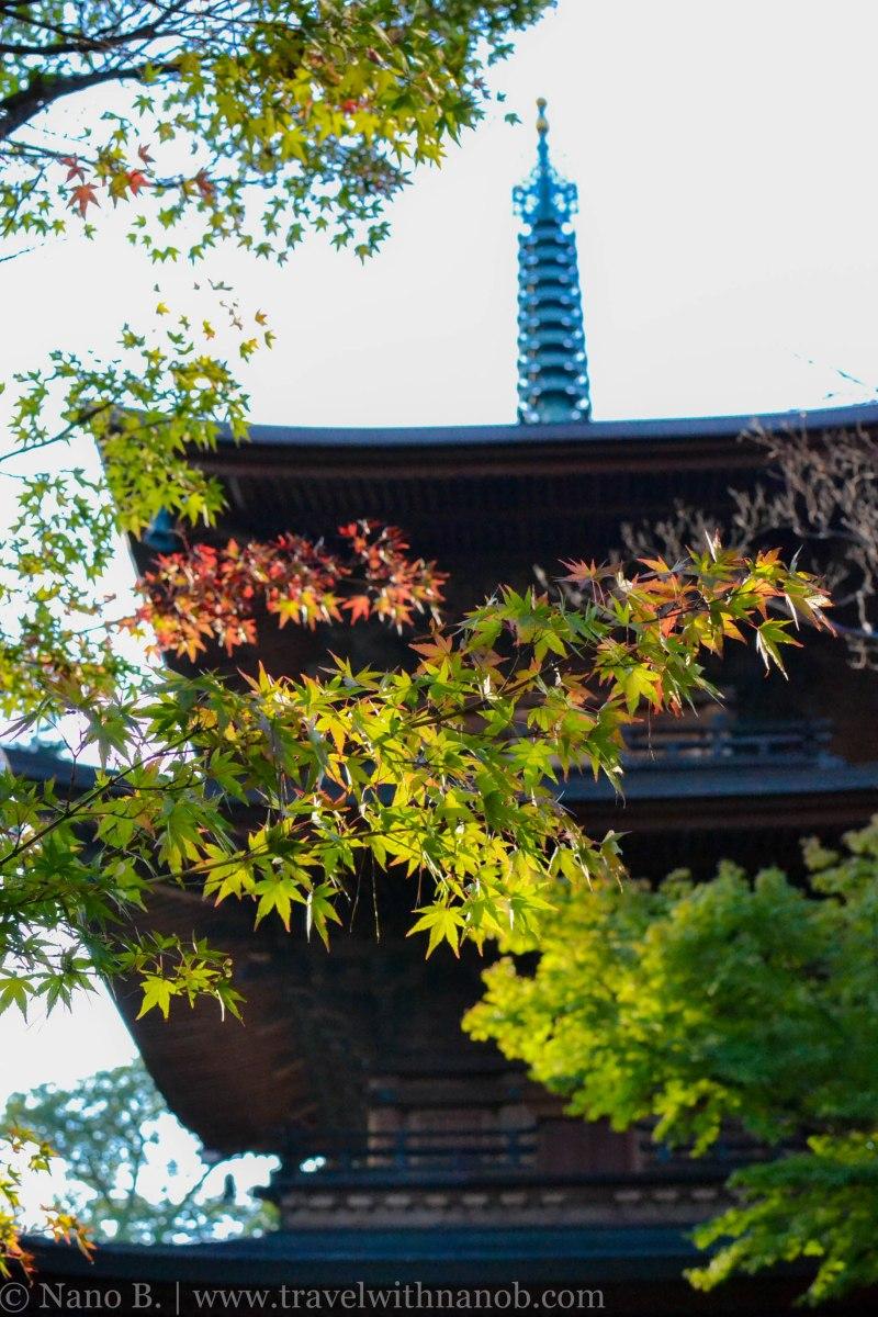 gotokuji-temple-tokyo-4