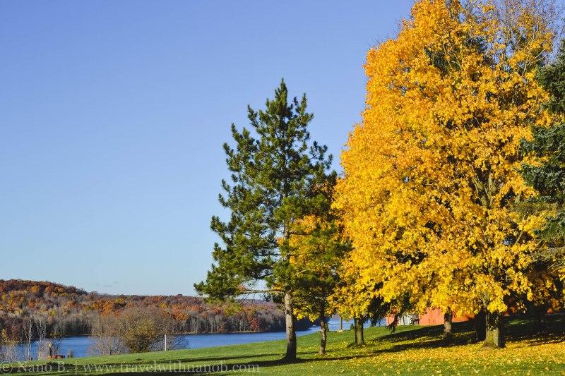 fall-in-usa-14