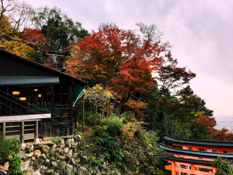 fushimi-inari-taisha-kyoto-1-2