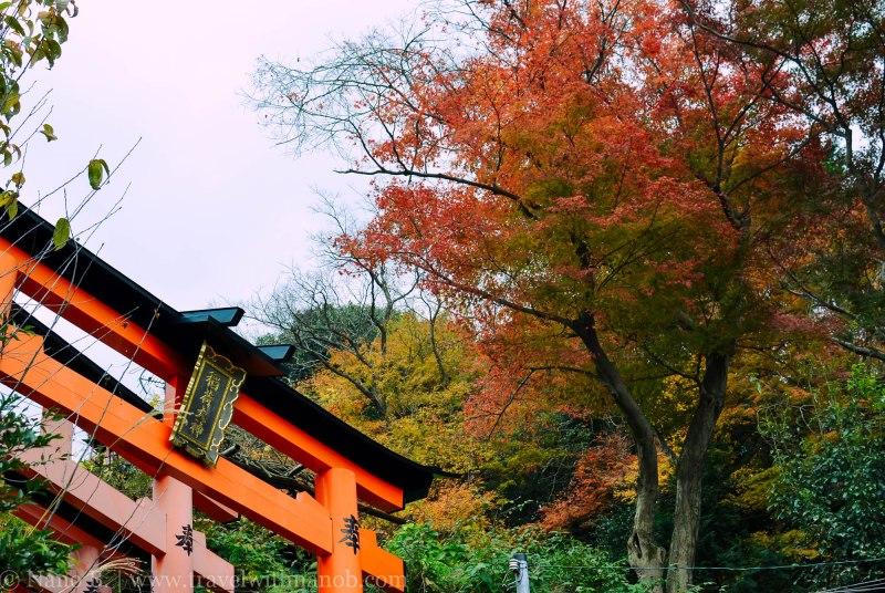 fushimi-inari-taisha-kyoto-19