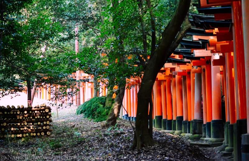 fushimi-inari-taisha-kyoto-9