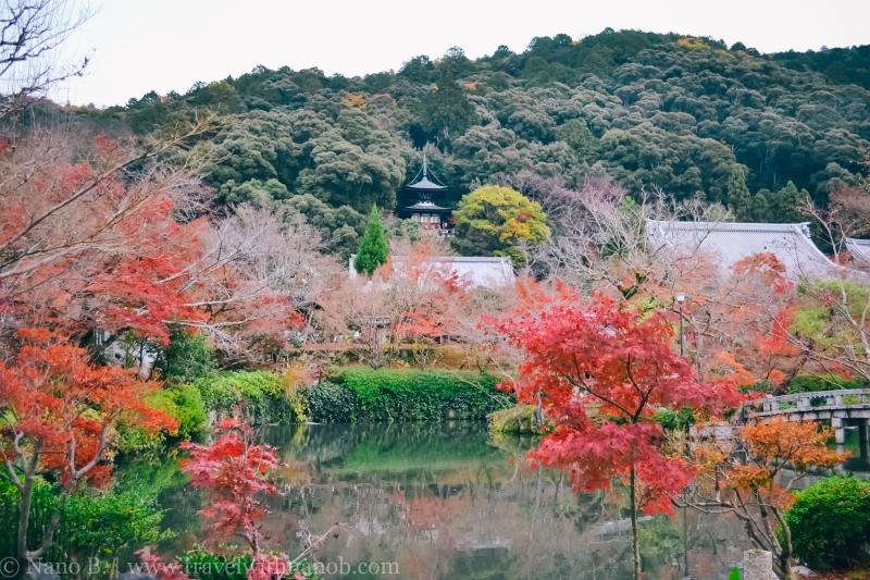 eikando-kyoto-16