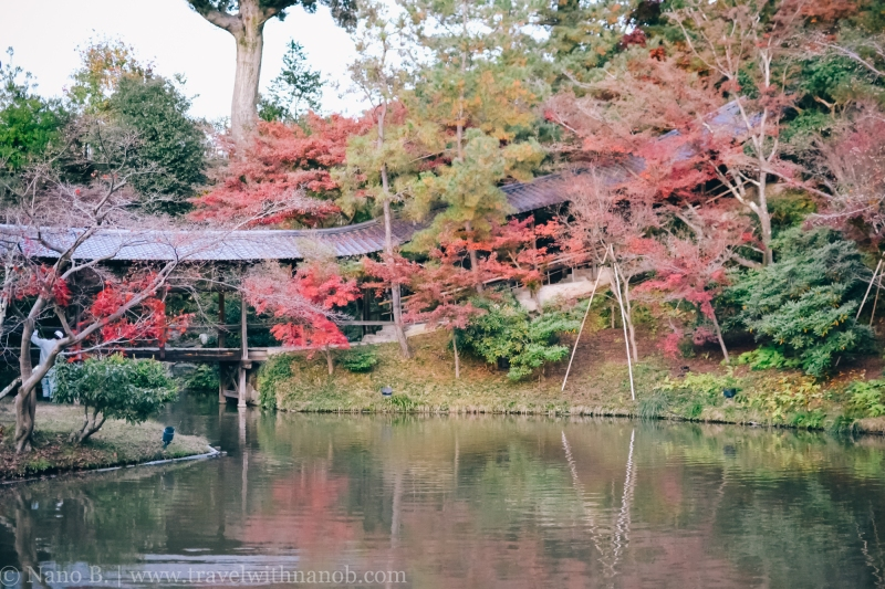 kodaiji-kyoto-12