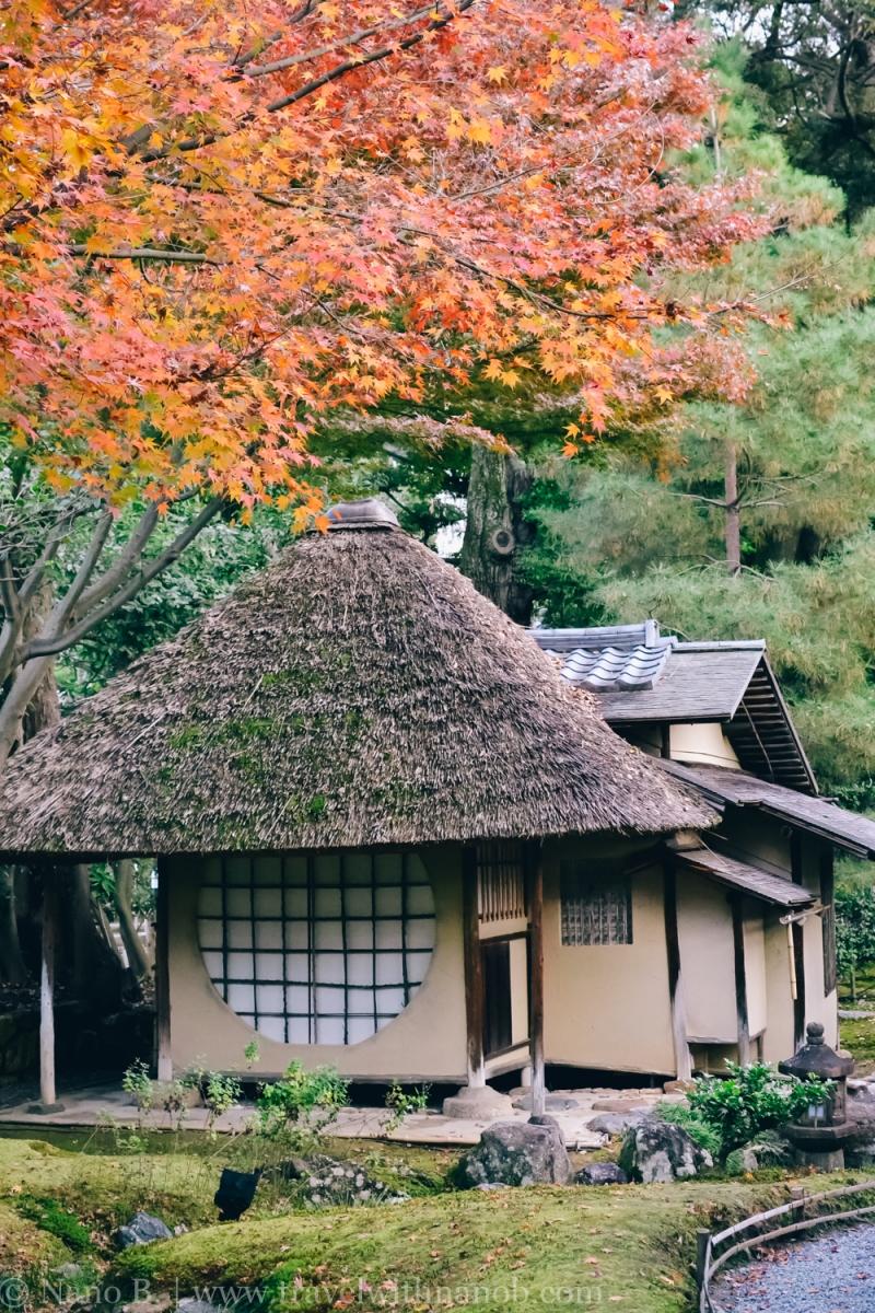 kodaiji-kyoto-4