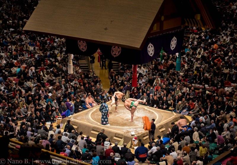 sumo-in-tokyo-15