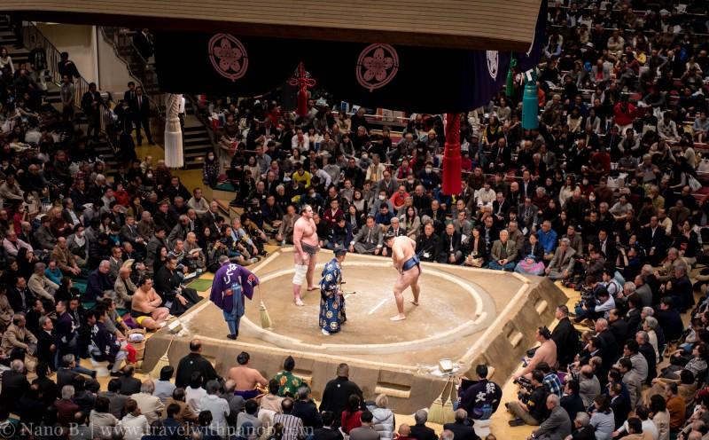 sumo-in-tokyo-21