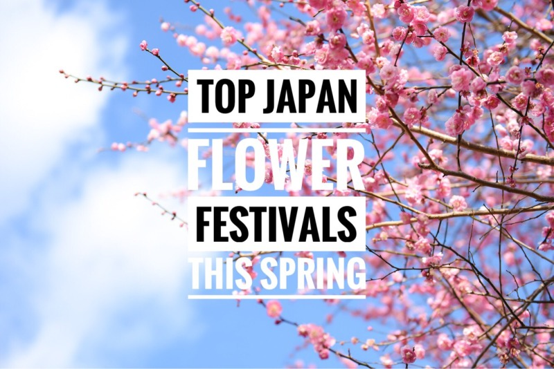 top-japan-flower-festivals