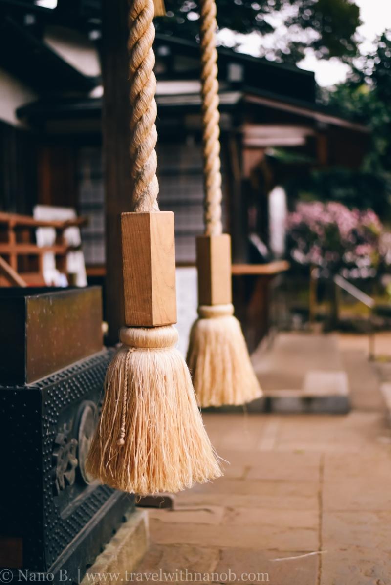 tokyo-shrines-17