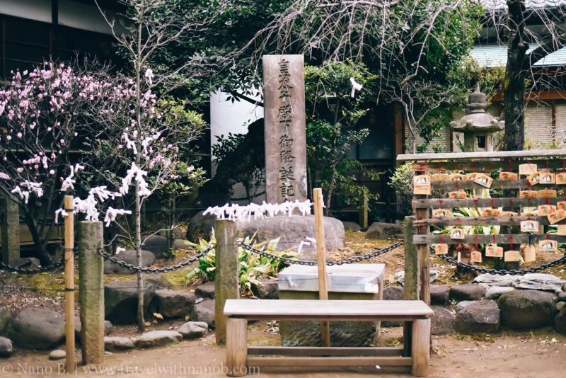 tokyo-shrines-19