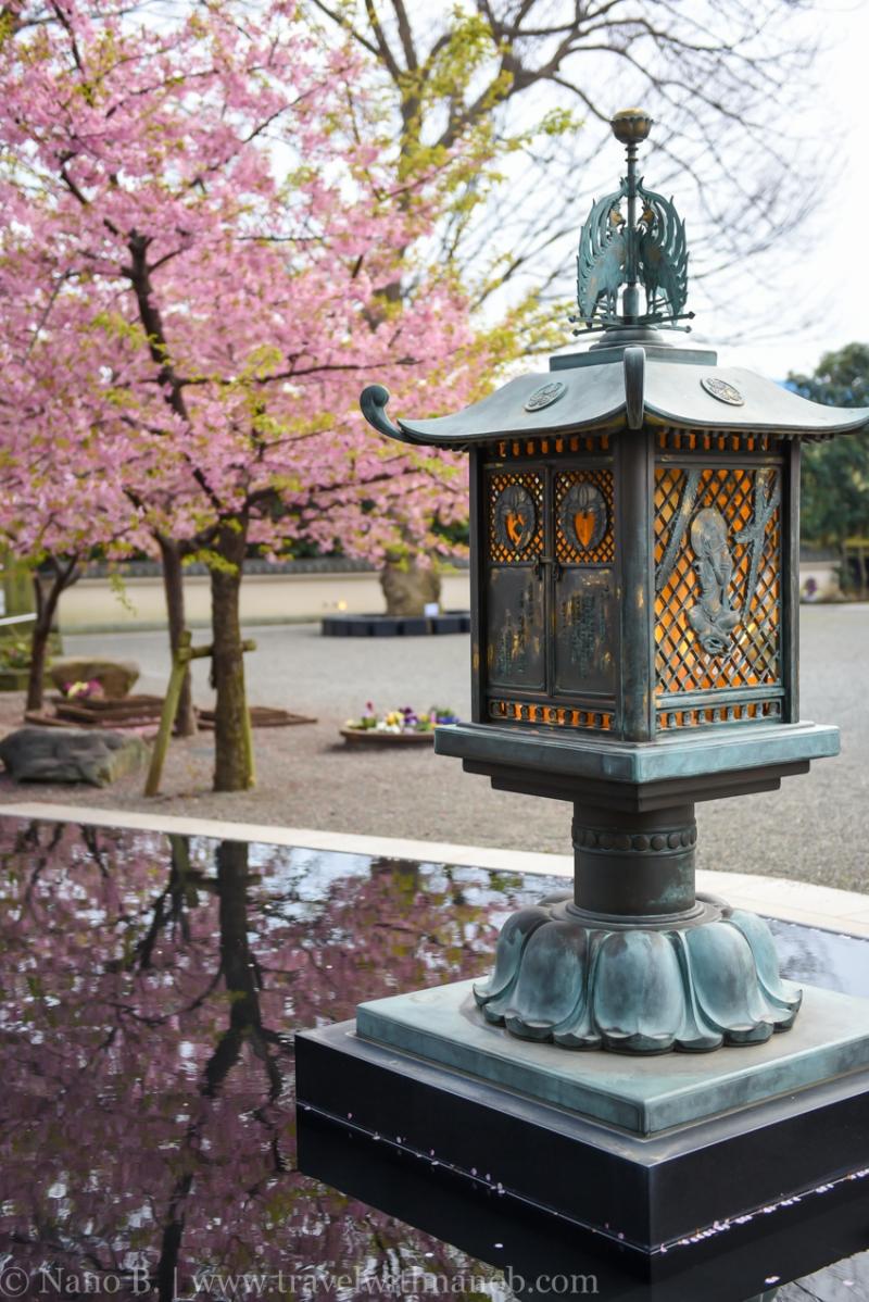 tokyo-shrines-40