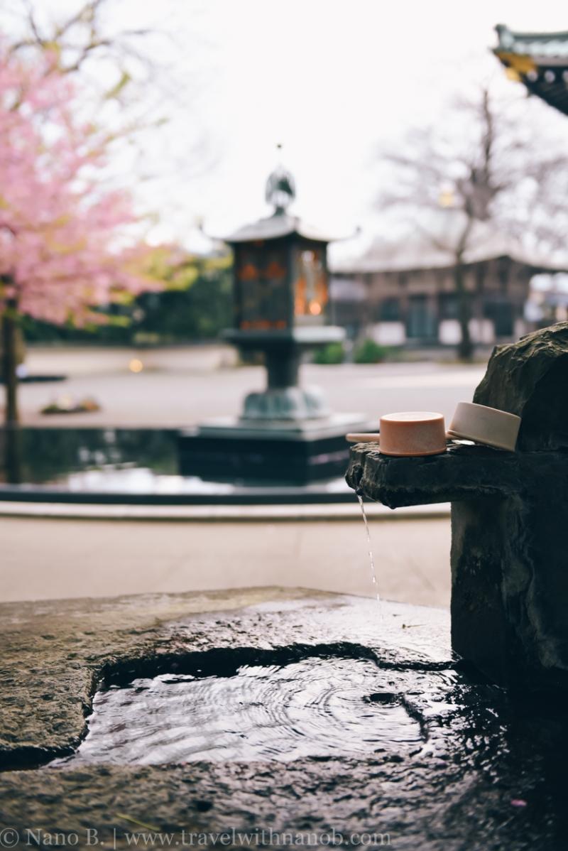 tokyo-shrines-41
