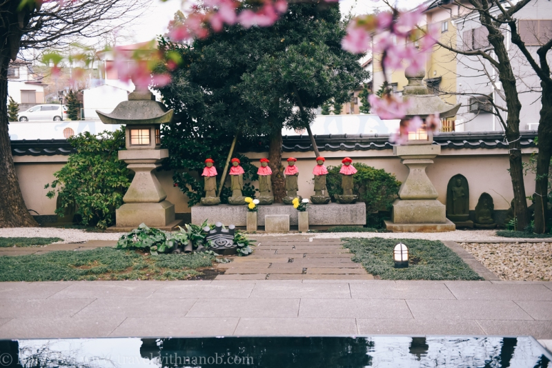 tokyo-shrines-43