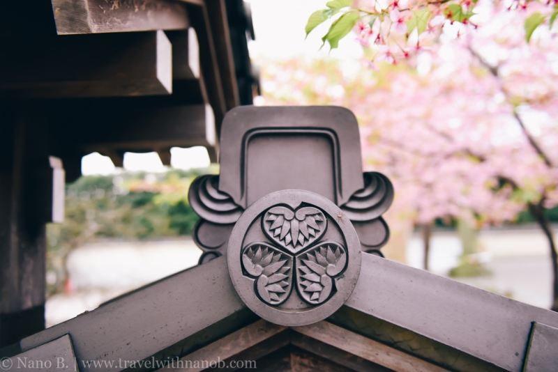 tokyo-shrines-52
