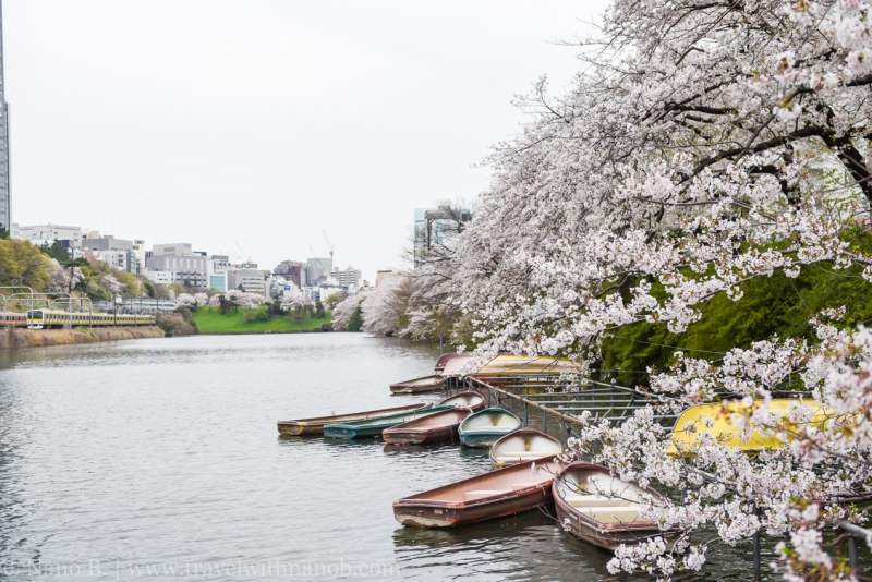 canal-cafe-tokyo-2