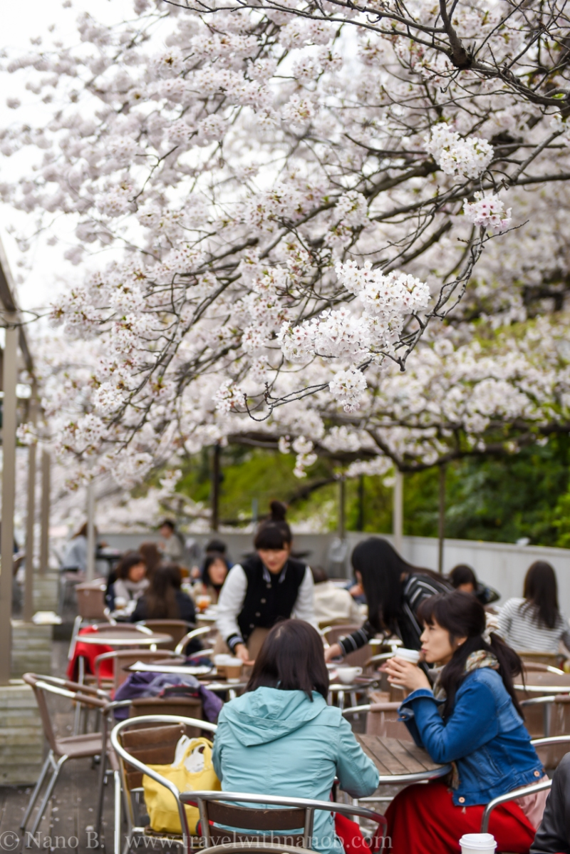 canal-cafe-tokyo-6