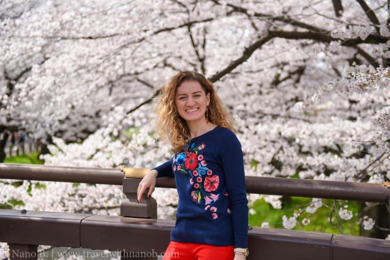 Kawagoe-Cherry-Blossom-25