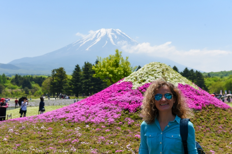 Fuji-Shibazakura-Festival-3