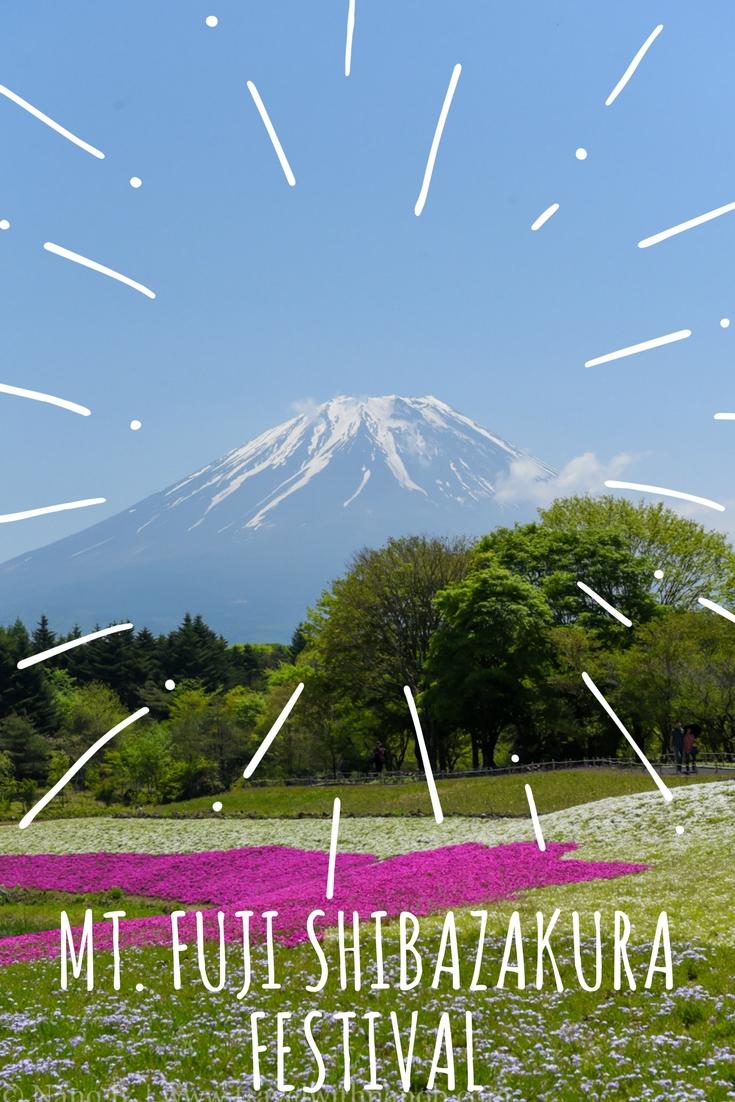 Mt.Fuji Shibazakura Festival on www.travelwithnanob.com