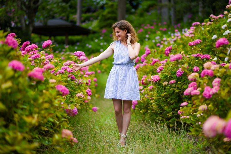 chiba-hydrangea-garden-16