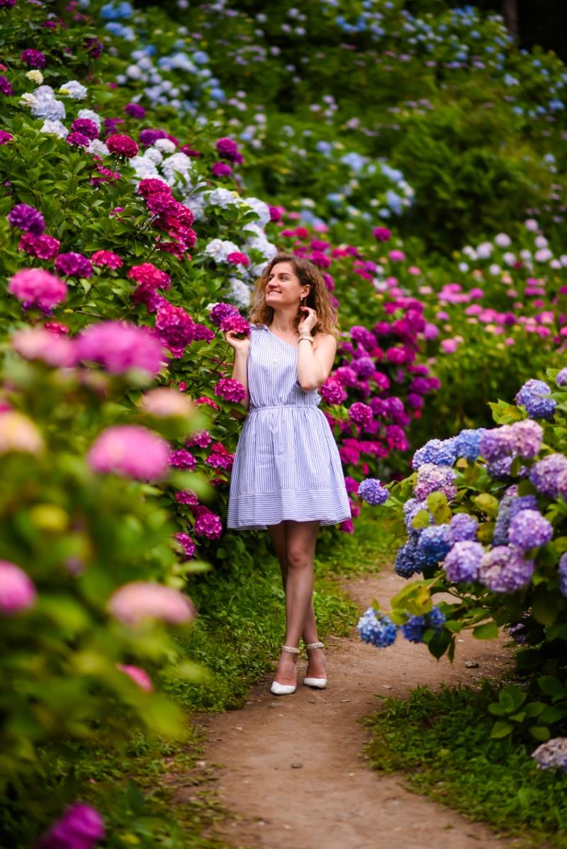 chiba-hydrangea-garden-31