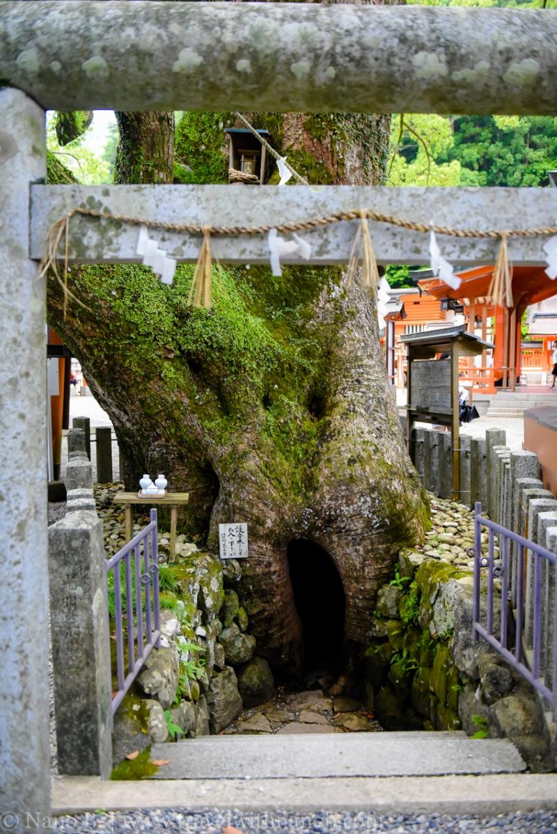 nachi-falls-wakayama-15