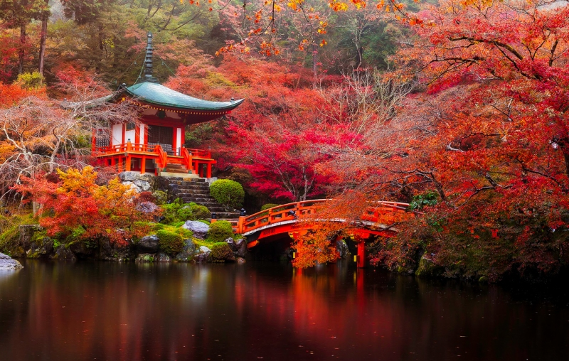Daigo-ji temple with colorful maple trees in autumn, Kyoto, Japan