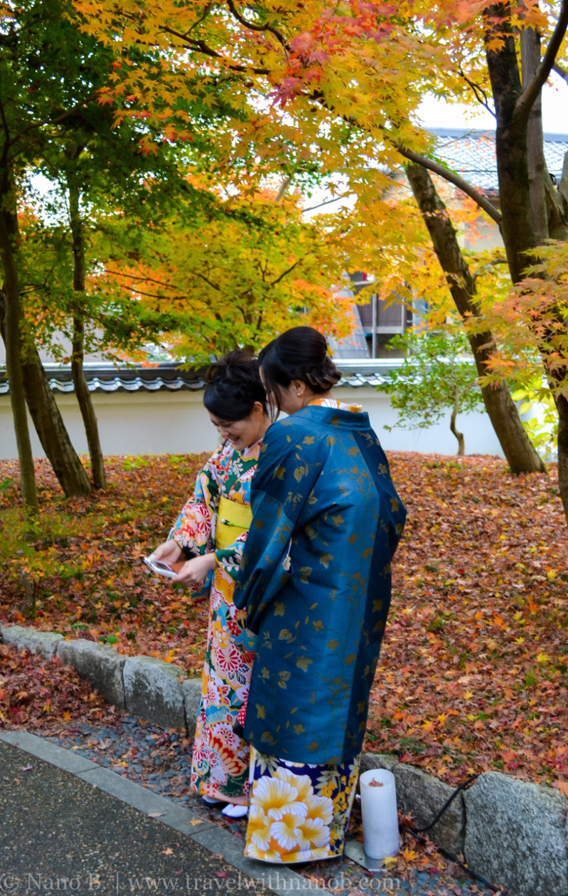 kyoto-autumn-leaves-16
